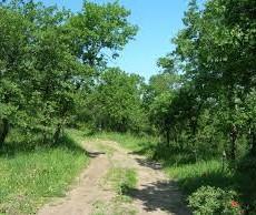 ¿Cuánto cuesta expropiar suelo rural? Los expertos apuntan un incremento del 500% en el precio