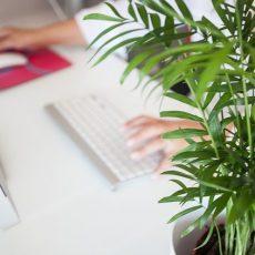 Empresas: no está justificado el traslado de un empleado cuando es posible teletrabajar